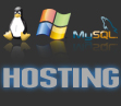 hosting professionali